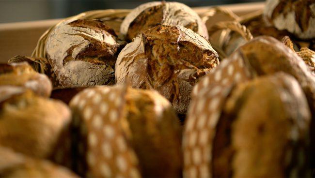 Festival des pains – 8 Le bélépeautre châtaigne sarrasin